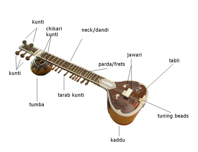 sitar and parts